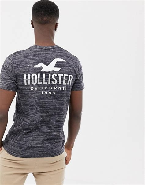 Hollister icon logo crew neck t-shirt with back print in