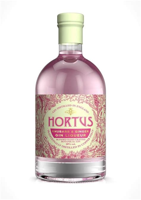 Lidl's rhubarb and ginger gin will help you get into the